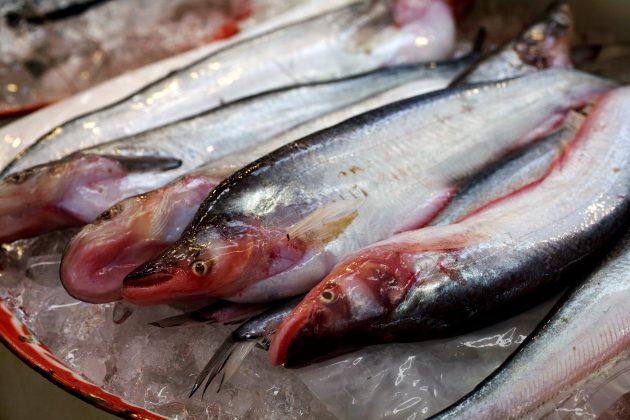 Польза рыбы доказана