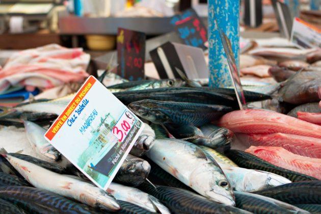 Польза рыбы больше, чем вред содержащейся в ней ртути