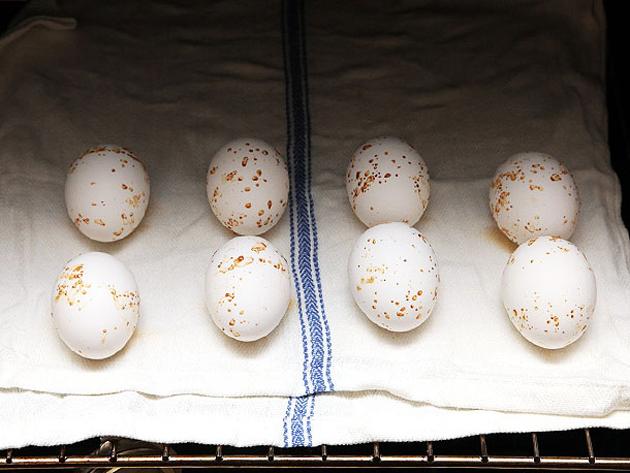 20140430-peeling-eggs-18_1461566018.jpg