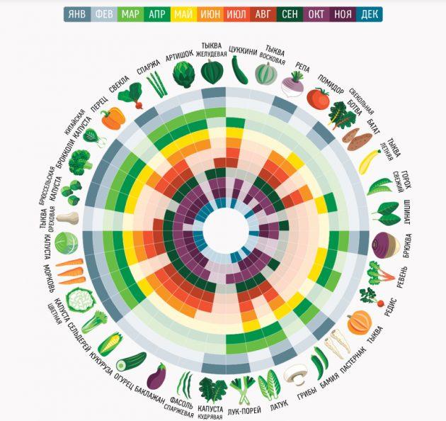 как выбрать свежие овощи