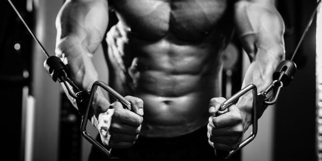 Работа мышц в картинках: упражнения для груди