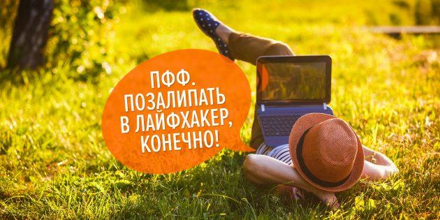Olga Danylenko/shutterstock.com