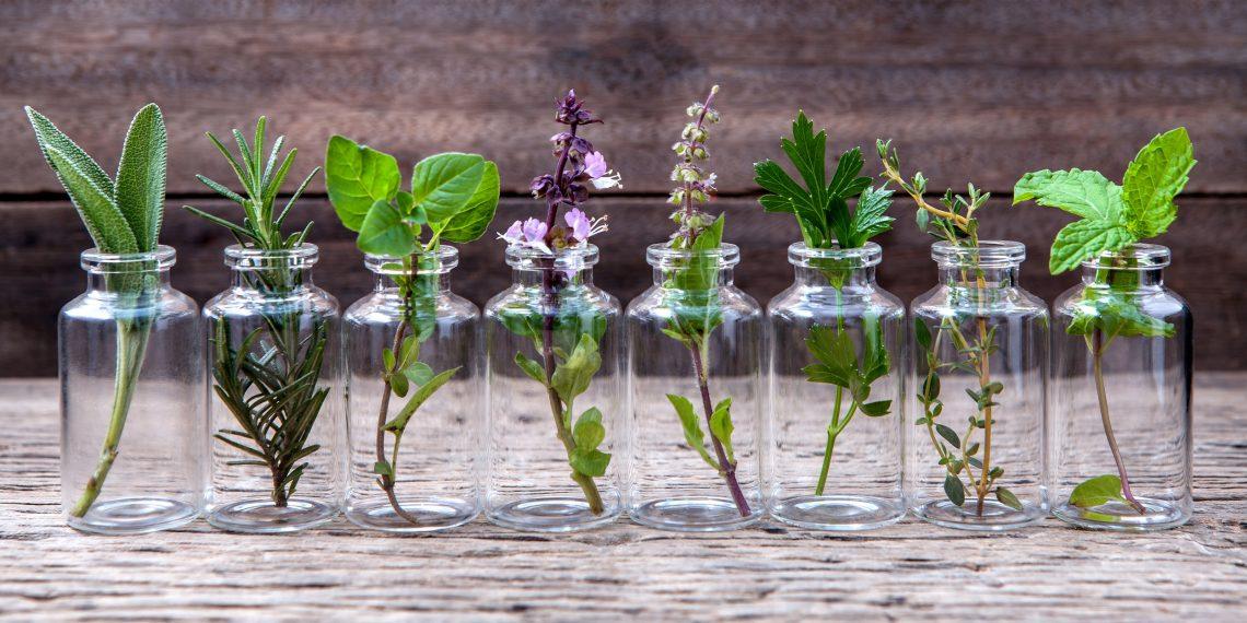 Как с помощью ароматов пробудить творческие способности, взбодриться или, наоборот, заснуть