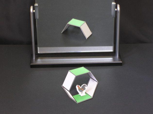 Кокичи Сугихара: оптические иллюзии