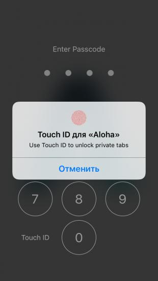 Aloha Browser: защита данных