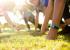 Новый фитнес-трекер от TomTom умеет определять количество жира в теле