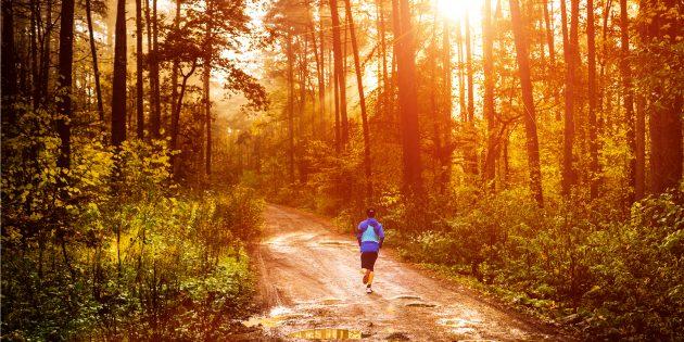 Как я начал бегать в 40 лет и спустя 4 года пробежал полумарафон без травм