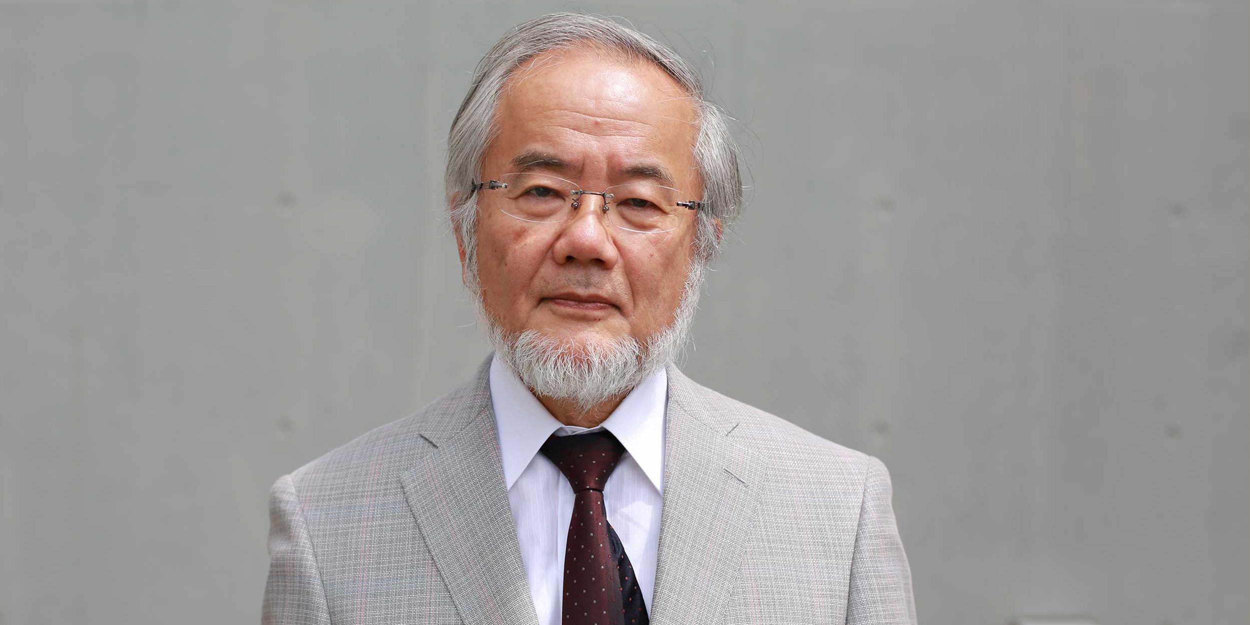аутофагия Ёсинори Осуми (Yoshinori Ohsumi)