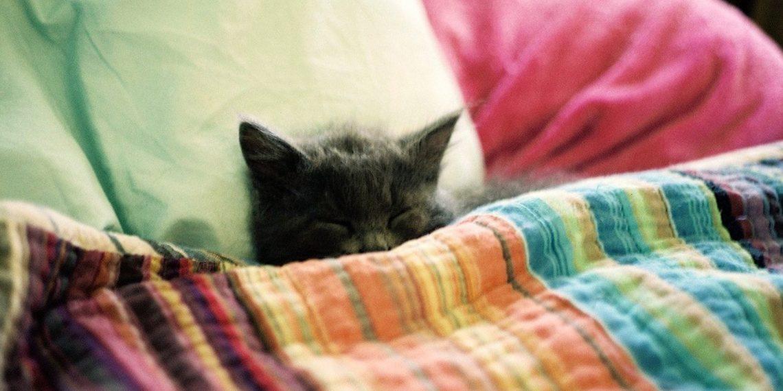 Как научиться решать проблемы во сне
