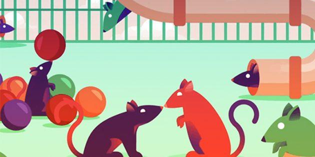 «Крысиный» способ избавиться от любой зависимости