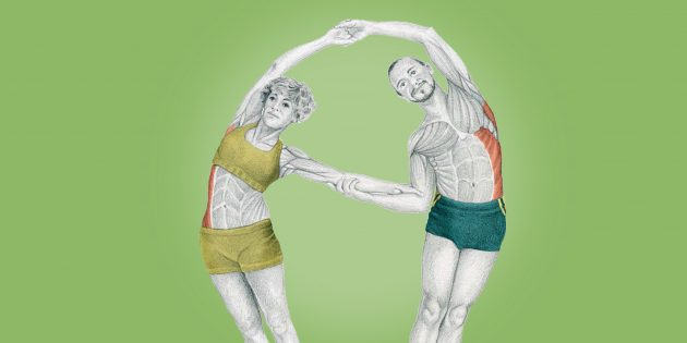 Анатомия стретчинга в картинках: внимание на мышцы кора
