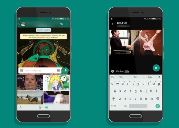 WhatsApp для Android добавил поиск и отправку гифок с Giphy