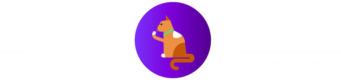как ухаживать за кошкой: гигиена