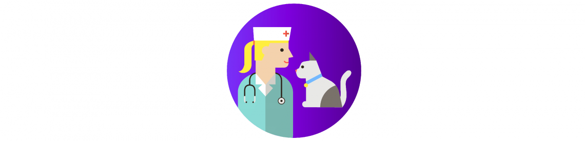 как ухаживать за кошкой: визит к ветеринару