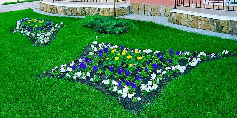 flower-bed_1527164853-e1527164875253.jpg