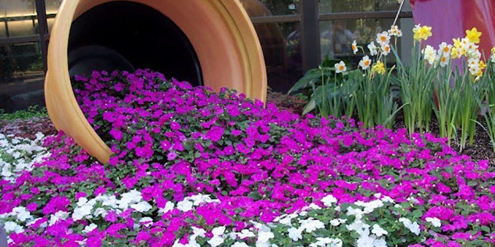 flower-bed_1527171833-e1527171895723.jpg
