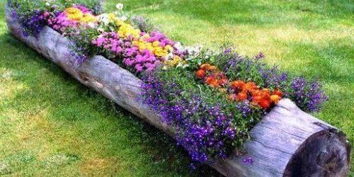 flower-bed_1527239119-e1527239134316.jpg