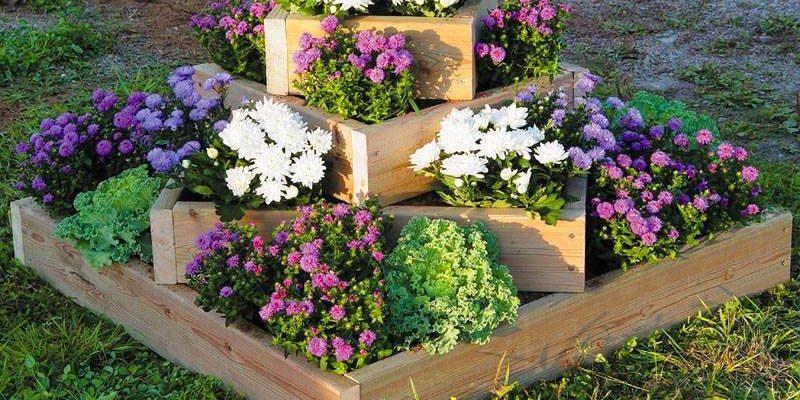 flower-bed_1527241434-e1527241449272.jpg
