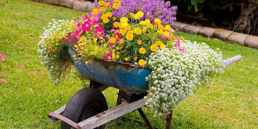 flower-bed_1527244088-e1527244131541.jpg