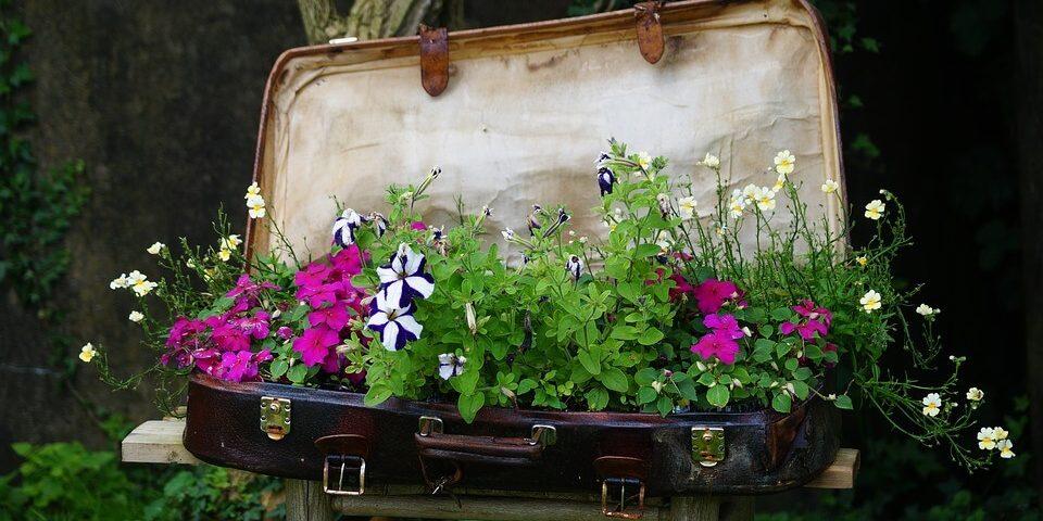flower-bed_1527244154-e1527244194936.jpg