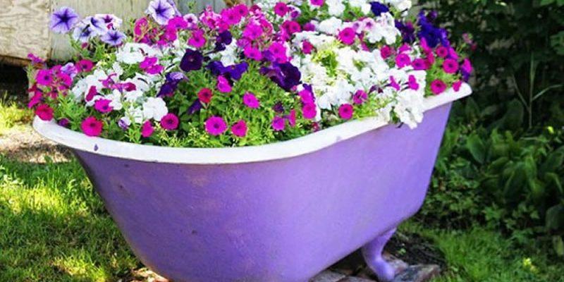 flower-bed_1527244654-e1527244694864.jpg