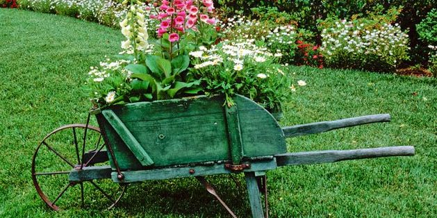 flower-bed_1527244725-e1527244805351.jpg