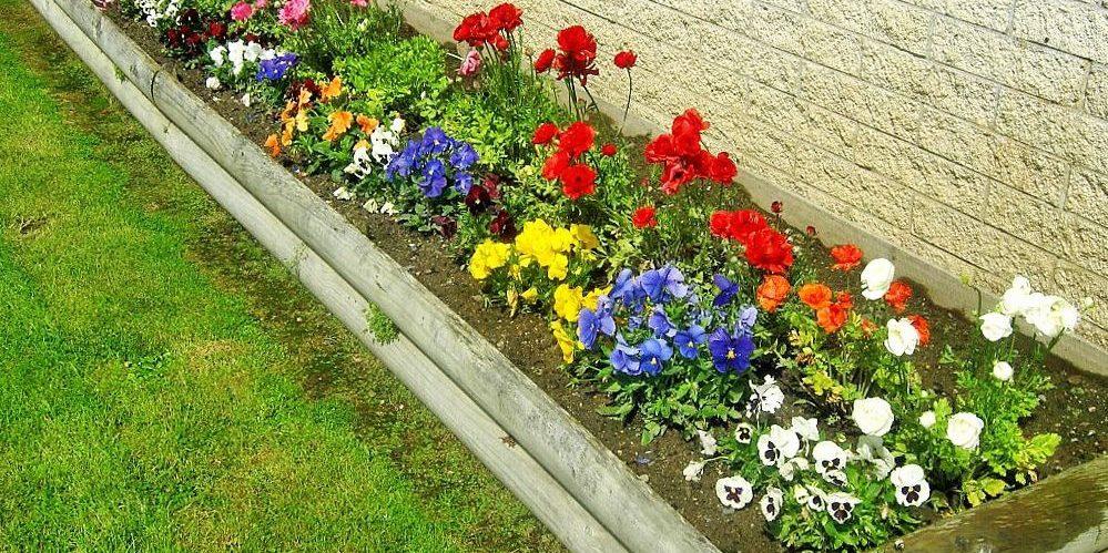 flower-bed_1527247128-e1527247150225.jpg