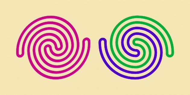 Головоломка: спираль слева состоит из цельной верёвки, спираль справа — из двух отдельных.