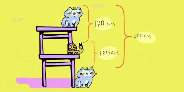 Задача про кота, стол и черепаху: решение